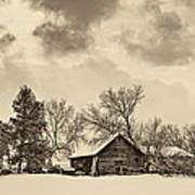 A Winter Sky Sepia Poster