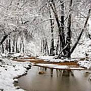 A Winter Walk  Poster