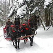 A Wonderful Day For A Sleigh Ride Poster