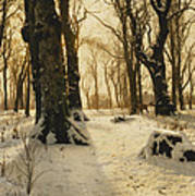 A Wooded Winter Landscape With Deer Poster