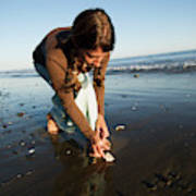 A Young Woman Collects Seashells Poster