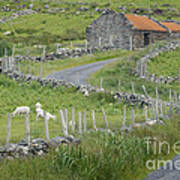 Abandoned Farm Building Poster