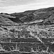 Abandoned Highway - Yakima County - Washington Poster