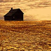 Abandoned Homestead Series Golden Sunset Poster