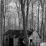 Abandoned Sugar Shack In Black And White Poster