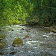 Abram's Creek Gsmnp Poster by Paul Herrmann