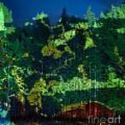 Abstract Colorful Light Projection On Trees Poster