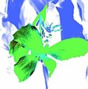 Abstract Green Poster by Cathie Tyler