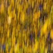 Abstract Of Autumn Gold Poster