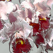 Abstract Orchid Poster