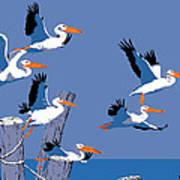 abstract Pelicans seascape tropical pop art nouveau 1980s florida birds large retro painting  Poster