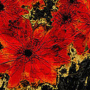 Abstract Red Flower Art  Poster