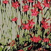 Abstract Red Flowers Poster