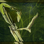 Abstract Snake And Bird Poster