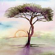 Acacia Sunrise Poster