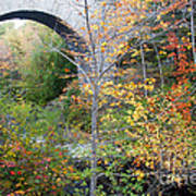 Acadia Carriage Bridge Poster