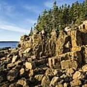 Acadia Seascape Poster