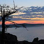 Acadia Sunrise 2 Poster