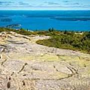 Acadia Views Poster