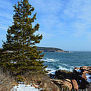 Acadian Shores In Winter Poster