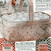 Ad Purina, 1919 Poster