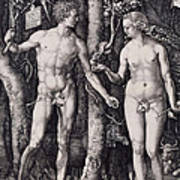 Adam And Eve Engraving Poster