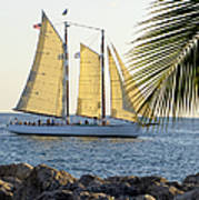 Sailing On The Adirondack In Key West Poster