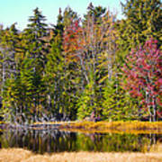 Adirondack Color Near Old Forge New York Poster