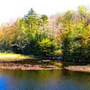 Adirondack Color X Poster