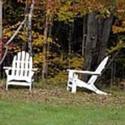 Adirondack Foliage Poster