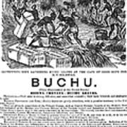 Advertisement: Buchu, 1871 Poster