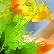 African Daisy I - Digital Paint Poster