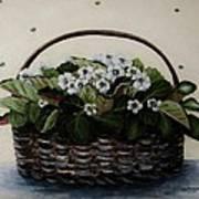 African Violets In Basket Poster