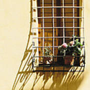 Afternoon Shadow In Montepulciano Poster