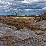 Agate Bridge In Petrified Forest National Park-arizona Poster