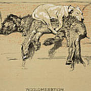 Agglomeration Poster