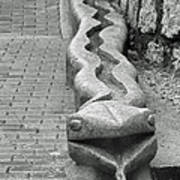Aguas Calientes Snake Poster