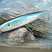 Ajs Baby Weakfish Saltwater Swimmer Fishing Lure Poster