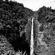 Akaka Falls - Bw Poster