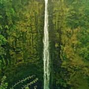 'akaka Falls Poster