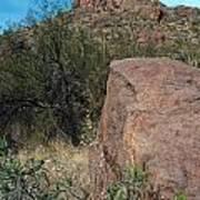 Alamo Canyon Hike Poster