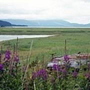 Alaska - Juneau Wetlands Poster
