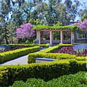 Alcazar Garden Vibrant Color Display Balboa Park Poster