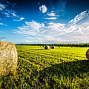 All American Hay Bales Poster by David Morefield