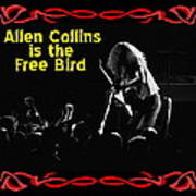 A C  Is The Free Bird 2 Poster