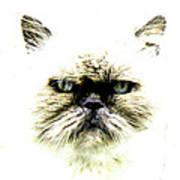 'allo Kitty Poster