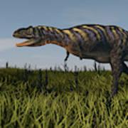 Alluring Aucasaurus In Grassland Poster