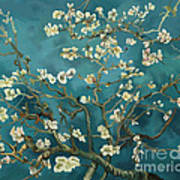 Almond Blossoms' Reproduction Poster
