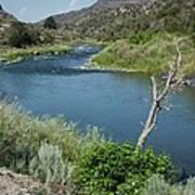 Along The Rio Grande River Poster