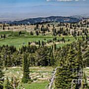 Alpine View Poster